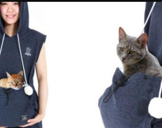 Hoodie porta gatos… ¿Está increíble!