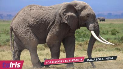 ¡La parábola de los ciegos y el elefante!
